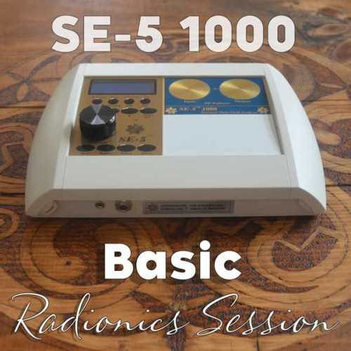 Basic SE-5 session